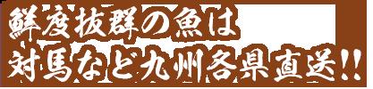 鮮度抜群の魚は対馬など九州各県直送